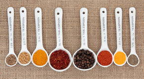 Spice Quantities Royalty Free Stock Images