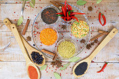 Spice with red pepper on a wooden background with different grits Stock Images