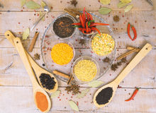 Spice with red pepper on a wooden background with different grits Royalty Free Stock Photography