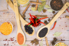 Spice with red pepper on a wooden background with different grits Royalty Free Stock Image