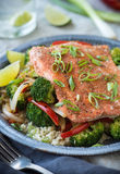 Spice Rubbed Salmon Stock Photography