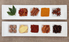 Spice Sampler Stock Image