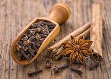Spice scoop with cloves star anise and cinnamon Stock Image