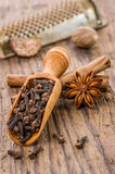 Spice scoop with cloves, star anise and cinnamon Stock Image