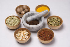 Spice selection. Bowls of spices in whole and ground form with mortar and pestle Stock Images