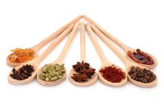 Free Spice Selection Stock Images - 13104324