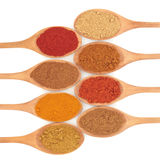 Spice Selection Royalty Free Stock Images