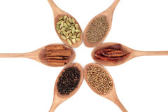 Spice Selection Royalty Free Stock Photo
