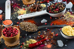 Spice selection from all around the world. On black background stock image