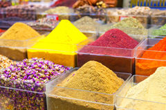 Spice selection Royalty Free Stock Image