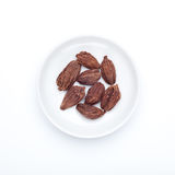 Spice series: Black cardamom Stock Photo