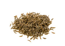 Spice series - caraway isolated on white Stock Image