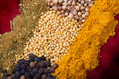 Spice set Royalty Free Stock Image
