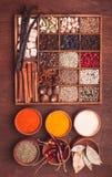 Spice set Royalty Free Stock Photo