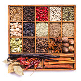 Spice set isolated Stock Photography