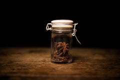 Spice shaker with anise seeds Stock Photography