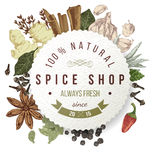 Spice shop paper emblem with different spices Stock Image