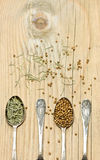 Spice in silver spoons on wooden background Royalty Free Stock Photo