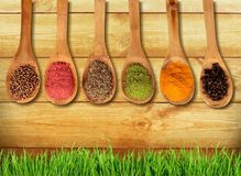 Spice. Food indian culture spoon organic cutting board vegetarian food Stock Images