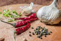 Spice spicy Royalty Free Stock Photo