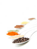 Spice spoon. Isolated spoons with diferent spice Royalty Free Stock Image