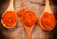 Spice in spoon Royalty Free Stock Images
