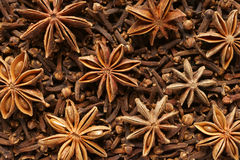 Spice star anise and cloves. Close-up. Background Royalty Free Stock Image