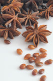 Spice - Star Anise Stock Images
