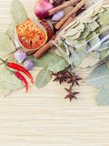 Spice taste with copy space. Food Cooking ingredients. - spice taste with copy space Royalty Free Stock Photo