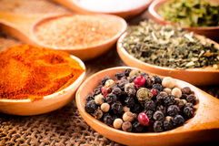 Spice time Royalty Free Stock Images