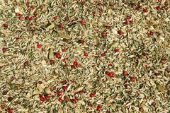 At a spice trade Royalty Free Stock Photo