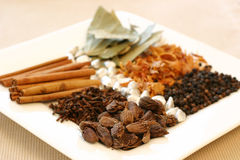 Free Spice Tray Stock Photos - 268333