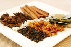 Spice Tray. An assortment of fragrant, richly flavored spices - bay leaves, mace, peppercorns, black pepper, silver cardamom pods, cloves and cinnamon. Focus on royalty free stock photo