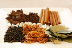 Spice Tray. An assortment of fragrant, richly flavored spices - bay leaves, mace, peppercorns, black pepper, silver cardamom pods, cloves and cinnamon. Focus on royalty free stock image