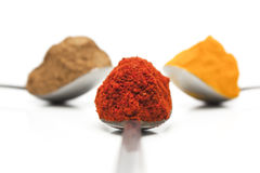 Spice Trio Royalty Free Stock Image