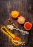 Spice turmeric, chili powder, coriander, cardamom, cloves Royalty Free Stock Image