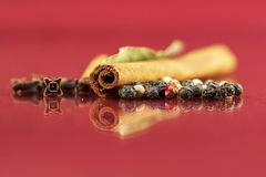 Spice variations on colorful background royalty free stock image
