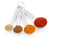 Spice Variety. Spice selection of paprika, turmeric, chinese five spice and  ginger in stainless steel measuring spoons, over white background. Right to left Royalty Free Stock Photo
