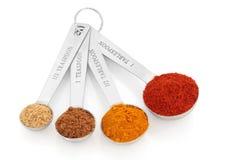 Spice Variety Royalty Free Stock Photo