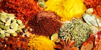 Spice. Various indian spices and herbs colorful background. Assortment of seasonings royalty free stock photos