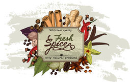 Spice vinage label. Royalty Free Stock Photography