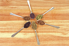 Spice Wheel. Six different whole spice seeds in silver spoons on a wooden background Royalty Free Stock Photo