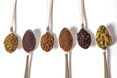 Spice On White. Six different whole spice seeds in silver spoons on a white background Stock Image