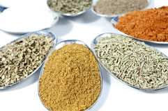 Spice on white Royalty Free Stock Image