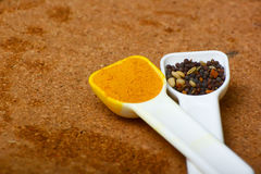 Spice world Royalty Free Stock Images