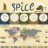 Spice of the world - part3. This infographic depicts information upon the geography of their habitat. The series consists of five images, each with five spices Royalty Free Stock Images