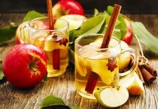 Spiced apple tea Royalty Free Stock Photo