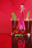 Spiced Bloody Mary or tomato juice Royalty Free Stock Photo