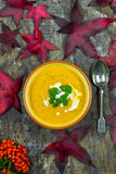 Spiced carrot and coriander soup Stock Photography