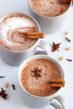 Spiced chai latte Royalty Free Stock Photos